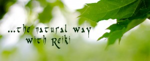 Reiki Course Wellington